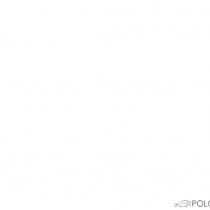 Mitglieder-Profil von GT_Rocket´09(#15077) - GT_Rocket´09 präsentiert auf der Community polo9N.info seinen VW Polo