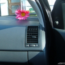 Mitglieder-Profil von pink(#16814) - pink präsentiert auf der Community polo9N.info seinen VW Polo