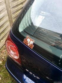 Mitglieder-Profil von Mettigel(#28087) aus Leipzig - Mettigel präsentiert auf der Community polo9N.info seinen VW Polo